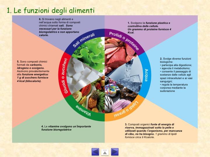produzione alimentare - power point